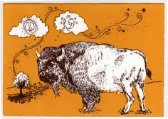 Bison for Peace