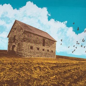 farmlandflight_2019